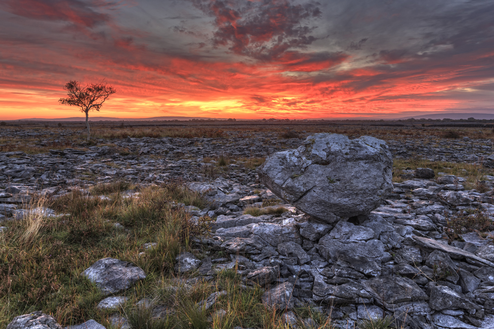 Novel Business Initiative Launched to Promote Burren Region Image